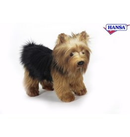 Yorkshire Terrier 9,8'' Hansa