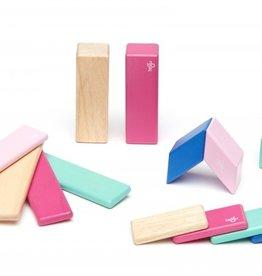 Tegu Tegu- 14 blocs de bois magnétiques