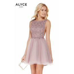 ALYCE ALY3801