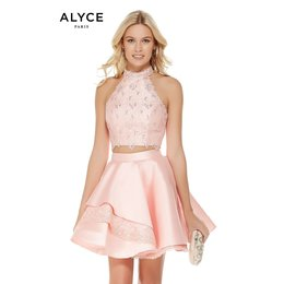 ALYCE ALY3811