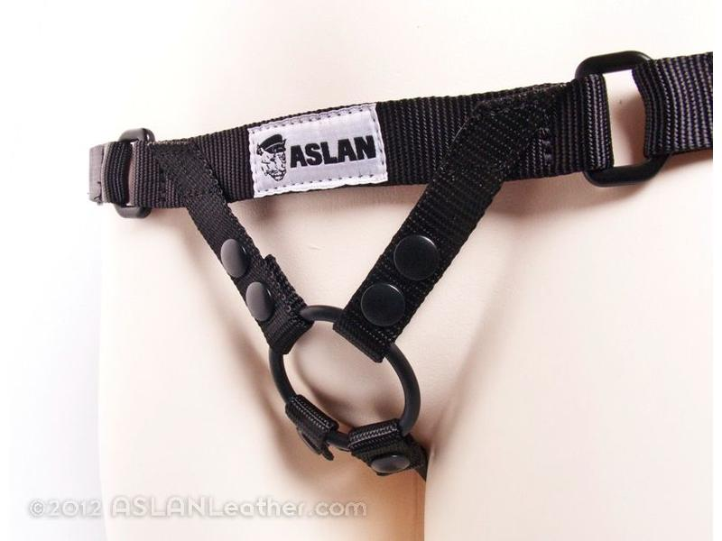 Aslan Simple Harness