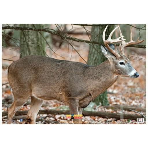 Nice Target Nice Target Deer Broadside Right 1 (Each)