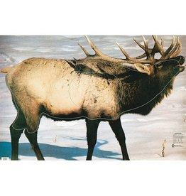 Martin Elk Group 2 Target