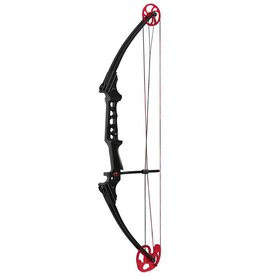 Mathews Genesis Pro Black w/Red Cam RH
