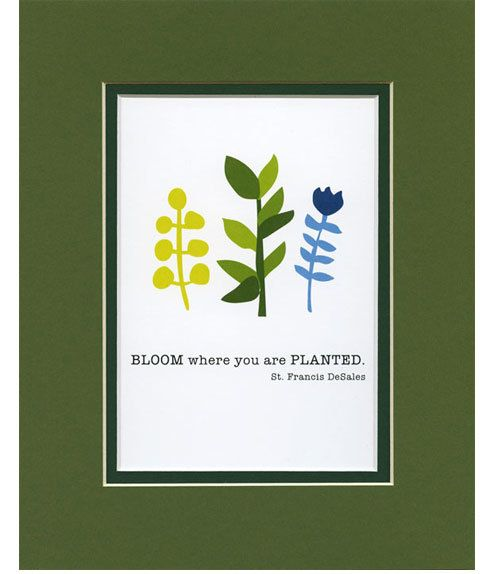 BLOOM where you... 5x7 Matted to 8x10 print