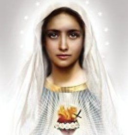 Thomas Valle 8 X 10 Immaculate Heart Of Mary Print
