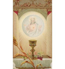 O Jesus Blessed Sacrament Prayer Card