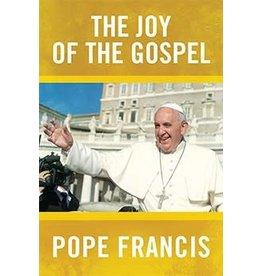 Dynamic Catholic The Joy of the Gospel (Paperback)