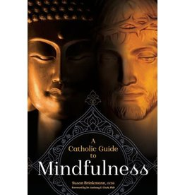 Createspace Independent Publishing Platform A Catholic Guide to Mindfulness