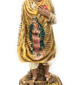 Liscano, Inc. Juan Diego with Tilma Statue