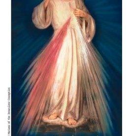 Marian Press Divine Mercy Chaplet Sick and Dying