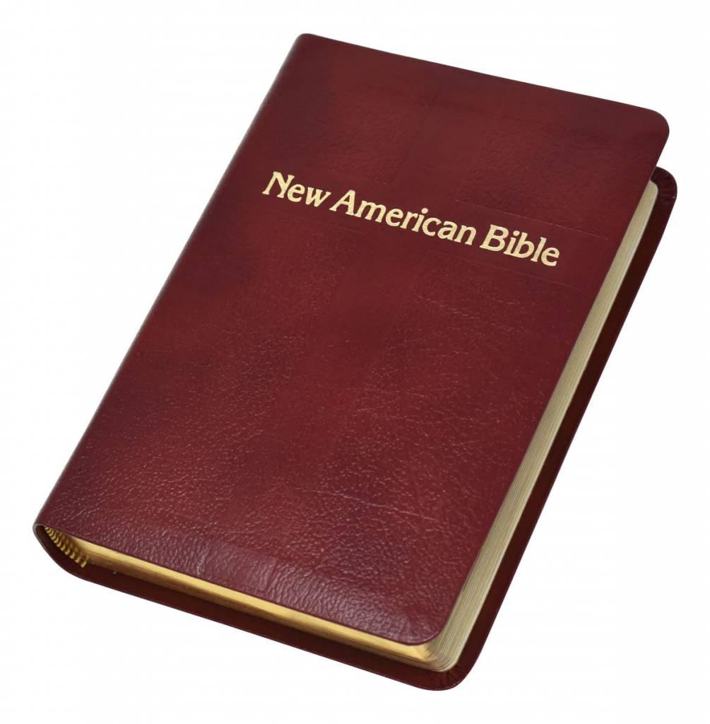 Catholic book publishing st. Joseph n. A. B. (personal size study.