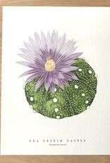 Living Pattern Print- Sea Urchin Cactus