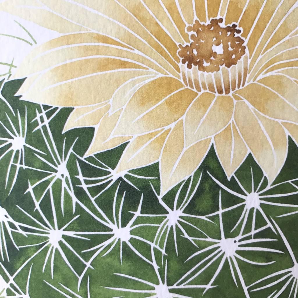 Living Pattern Print- Notocactus