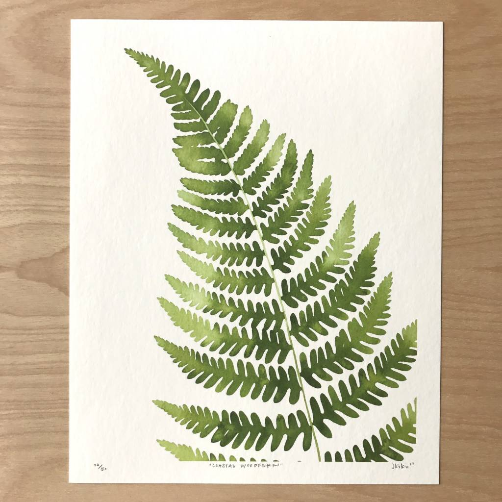 Living Pattern Print- Coastal Woodfern