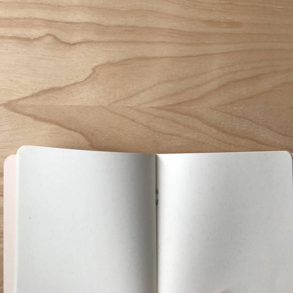 Notebook- Susan B Anthony
