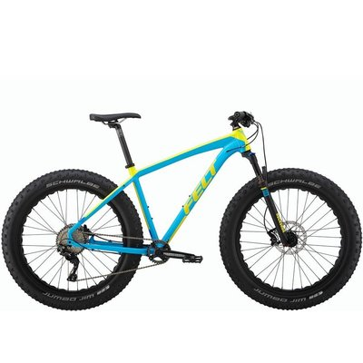 Felt DD 10 Fat Bike 2017