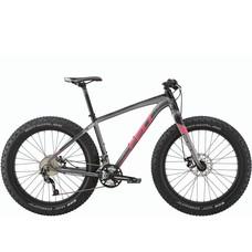 Felt DD 70 Fat Bike 2017