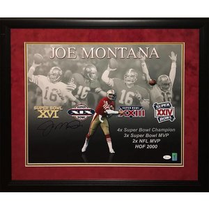 San Francisco 49ers - Joe Montana 16x20 Plays Montage