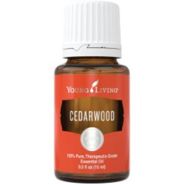 Cedarwood Essential Oil - 15ml Young Living