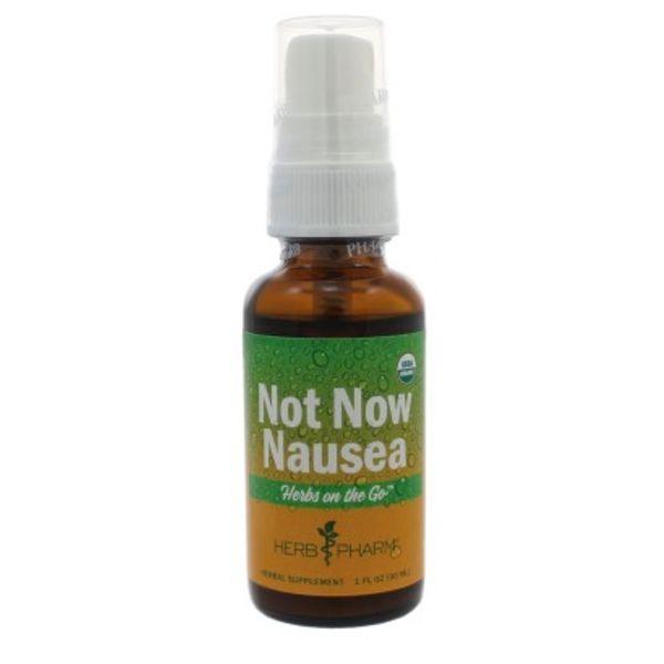 Not Now Nausea Spray - Herb Pharm