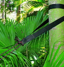 Hammock Bliss Hammock Bliss Standard Tree Straps