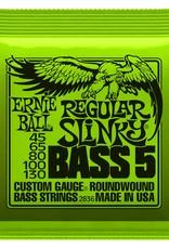 Ernie Ball Ernie Ball 5 String Electric Bass Reg Slinky
