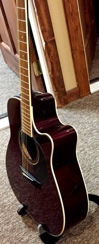 Takamine EG- 334RC Acoustic Elect Guitar