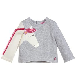 Joules Joules Dash Novelty Arm Sweatshirt
