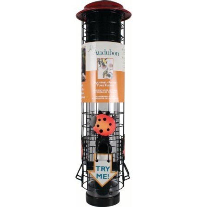 Audubon Ladybug Bird Feeder
