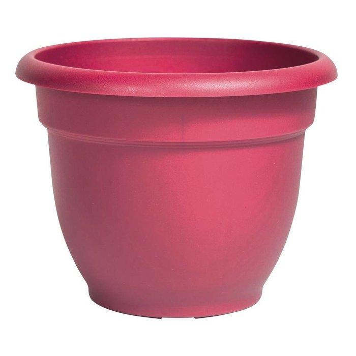 """Ariana Pink Pot 10"""""""