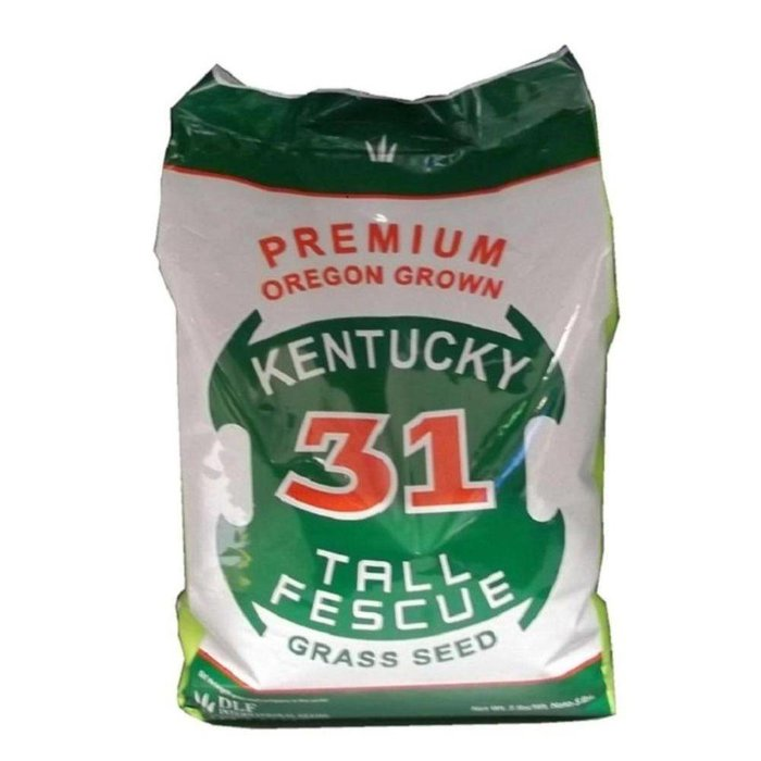 WQ Kentucky 31 Fescue Seed 5#