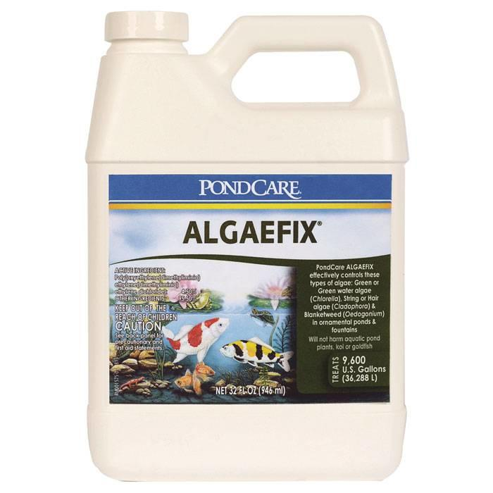 API Algae Fix 32 oz