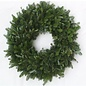 "Wreath Fresh Frasier Fir 24"""