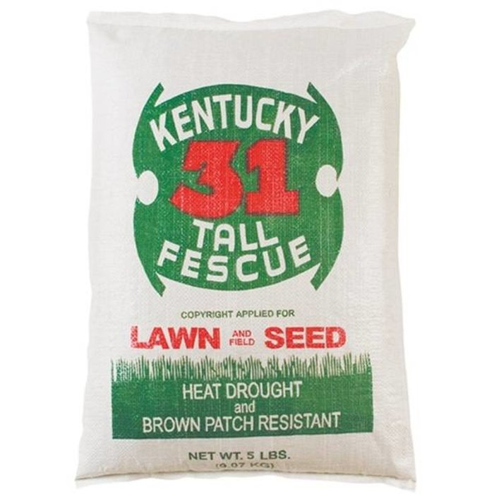WQ Kentucky 31 Tall Fescue 25#
