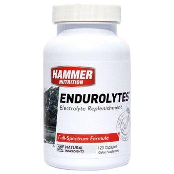 Hammer Nutrition Endurolytes Capsules - 120 Ct