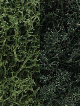 Woodland Scenics WOOL168 Lichen Bag, Dark Green Mix/165 cu. in.