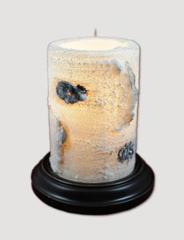 Birch Candle Sleeve