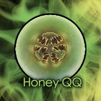 Honey QQ
