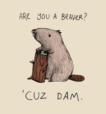 Are You A Beaver Unisex T-Shirt