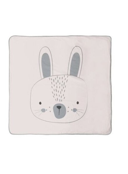 Mister Fly COUVERTURE -  LAPIN ROSE