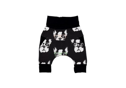 Little Yogi PANTALON ÉVOLUTIC - LITTLE BOSTON BLACK