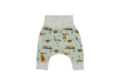 Little Yogi PANTALON ÉVOLUTIF - LITTLE FOX