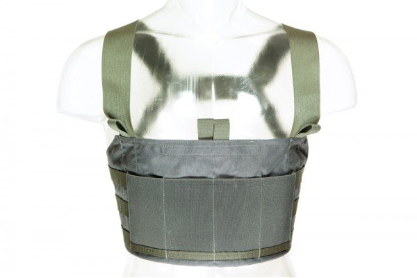 Blue Force Gear Blue Force Gear Ten-Speed M4 Chest Rig