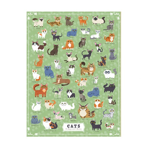 True South Puzzle Cats Puzzle