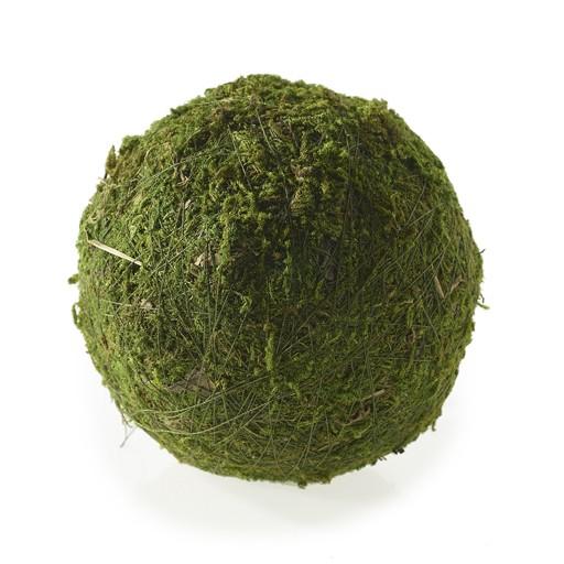"""Moss Sphere 4""""D"""