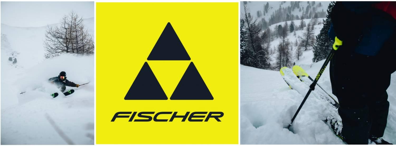 Fischer 2019