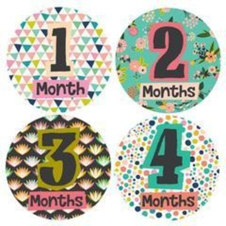 Lucy Darling Monthly Baby Stickers