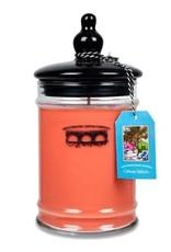 Bridgewater Candle Co Cabana Splash Large Jar