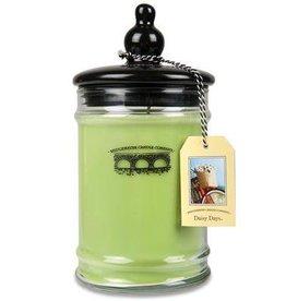 Bridgewater Candle Co Daisy Days Large Jar